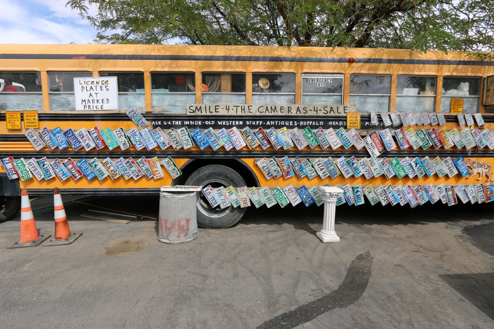 License plate bus