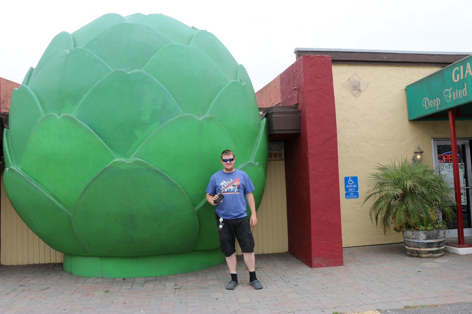 World's largest artichoke